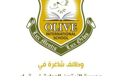 وظائف شاغرة في مدرسة الزيتون الدولية في قطر